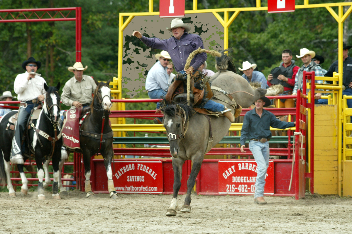 Check out that Bronc Rider!!!  Wooo Ha!