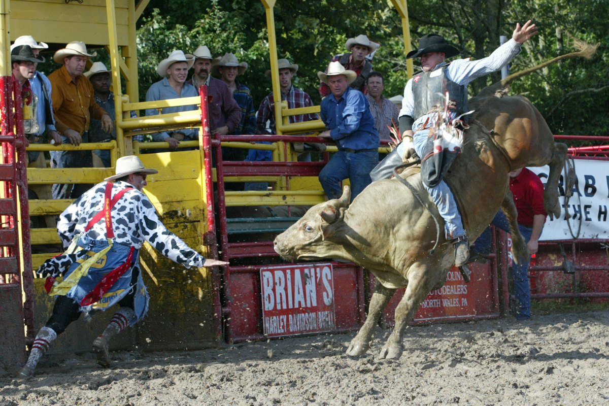 Bull Fighter Rory Meeks